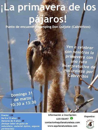 La primavera de los pájaros, ruta por Cabrerizos con Aquila