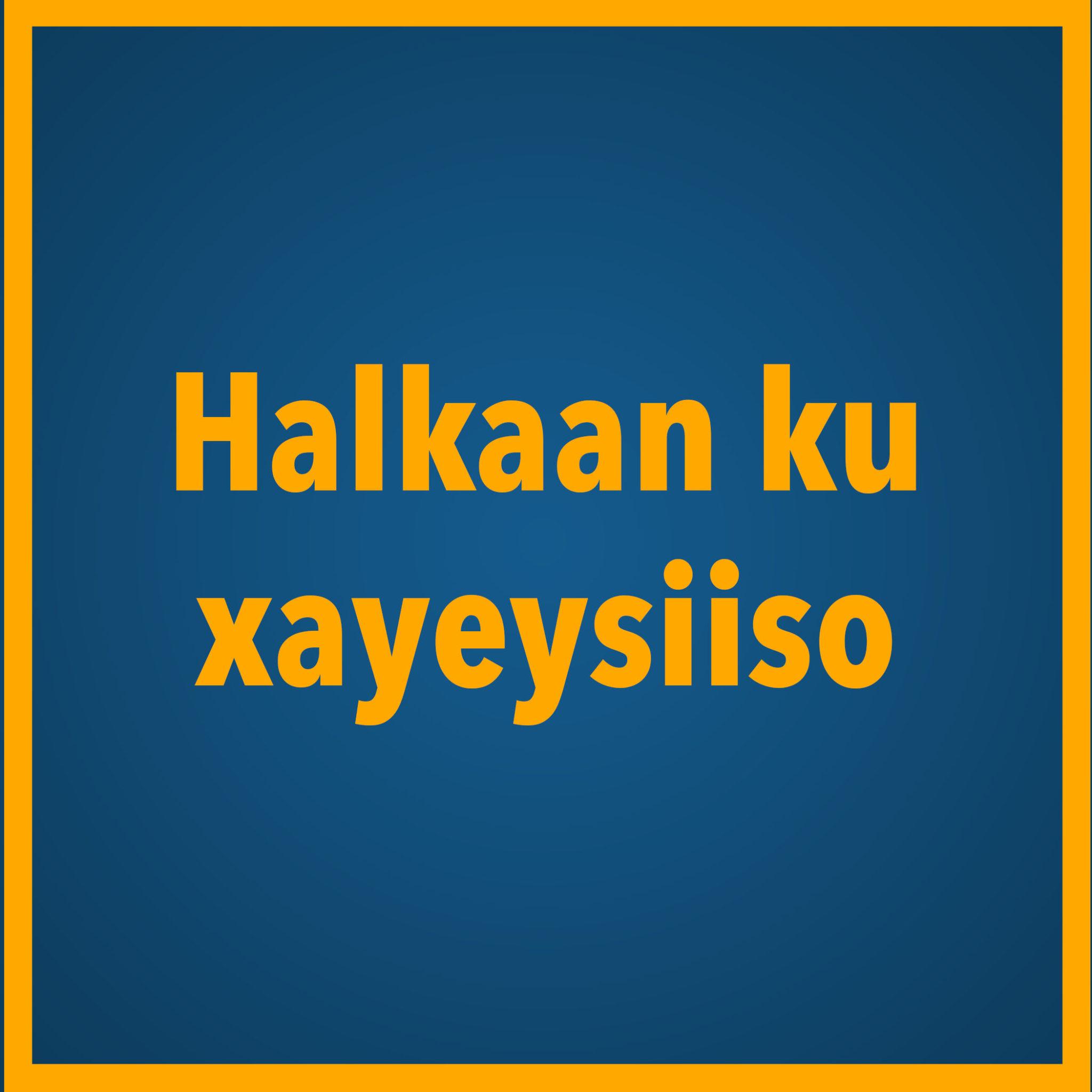 Xayeysiin