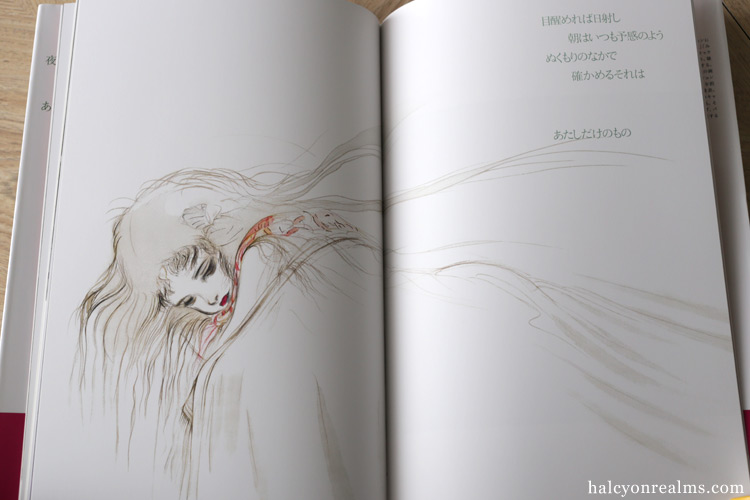 Angel's Egg - Yoshitaka Amano / Mamoru Oshii Art Book Review