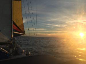 spinnaker sailing at sunset