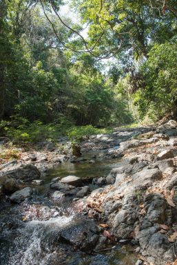 the path to the montezuma waterfall