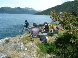Sea otter foraging observations at Beautiful Island, AK