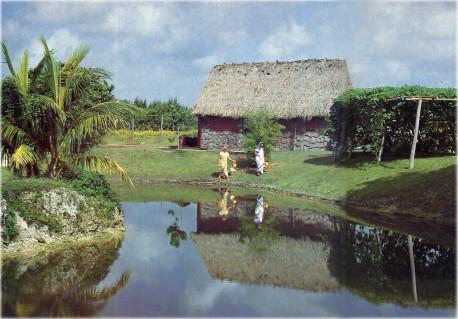 Lake Bindusarovara was once a neglected pool. Lake Bindusarovara was once a neglected pool.