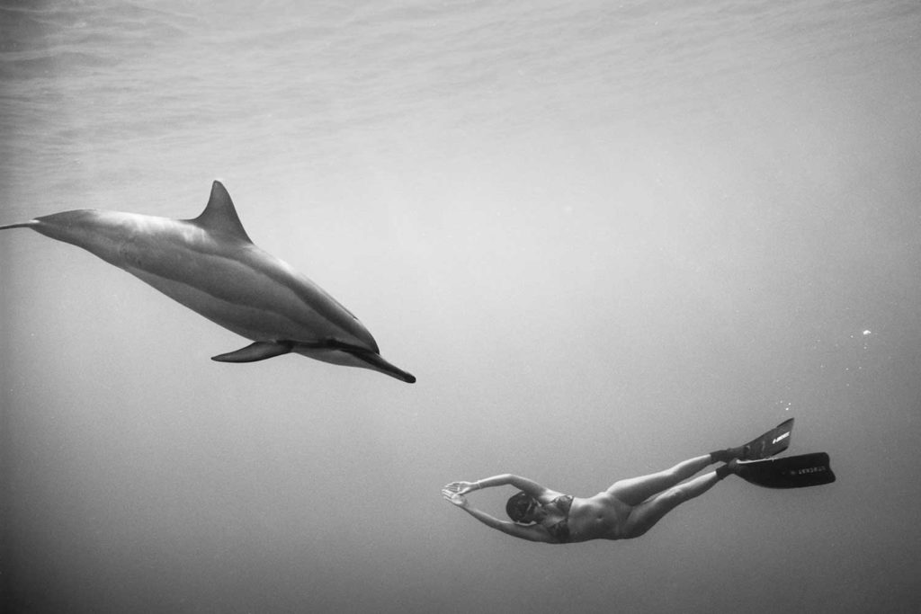 black and white photo of Kimi Werner swimming underwater with single dolphin