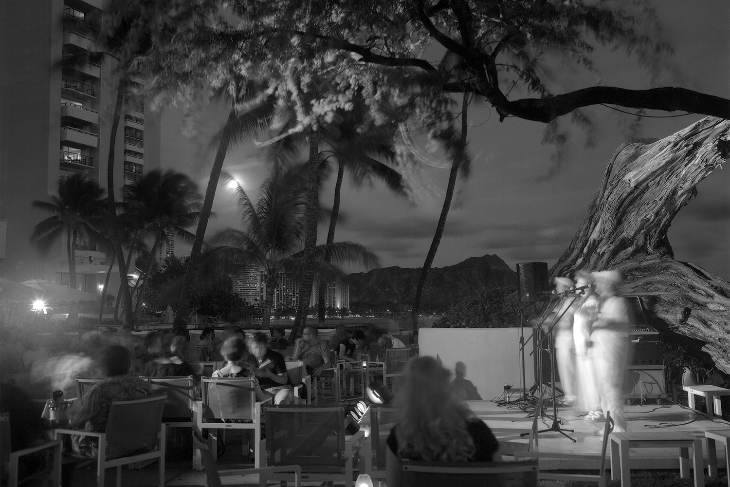 Black and white photo of kiawe tree at night with band on stage, dressed in white