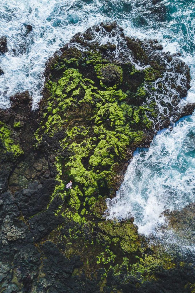 Aerial view of a moss covered point near the ocean