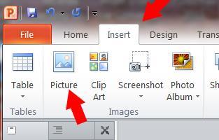 PP Insert Image