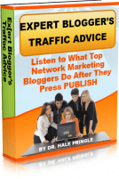 Expert Bloggers Traffic Advice