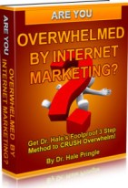 Overwhelmed by Internet Marketing