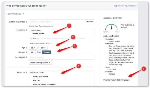 Facebook Video Ads - Pick Demographics