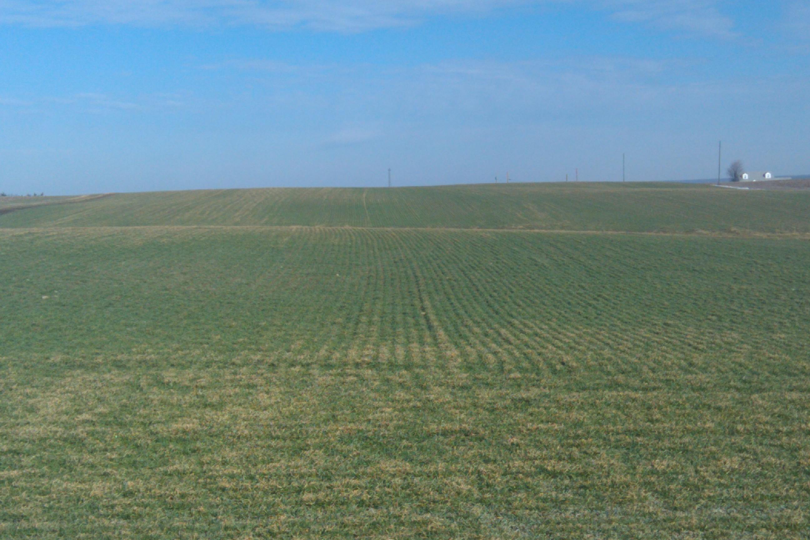 https://i0.wp.com/haley-farms.com/blog/wp-content/uploads/2011/02/IMAG0344.jpg