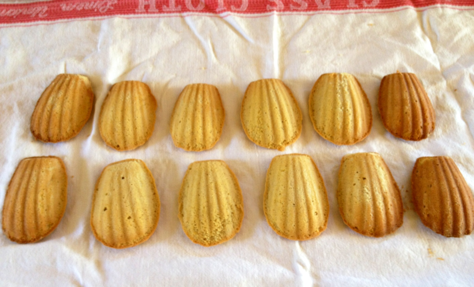 French Madeleine Cookies  Gourmet Food Daily