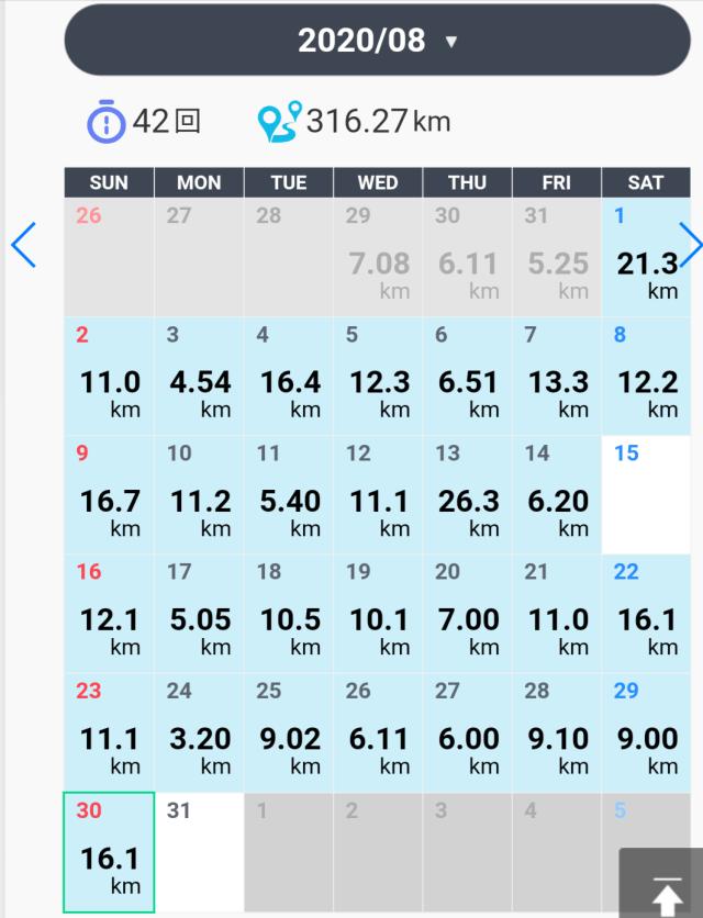 月間練習記録(2020年8月)316km