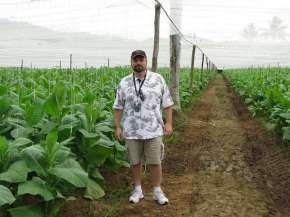Fields n Farm (24)