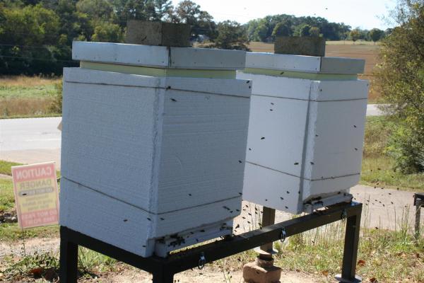 Beehive HalfAstFarm