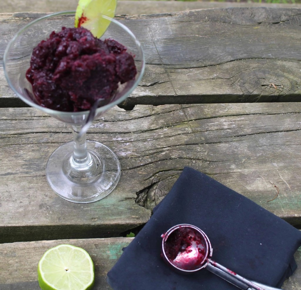 Cup of blueberry lime sorbet