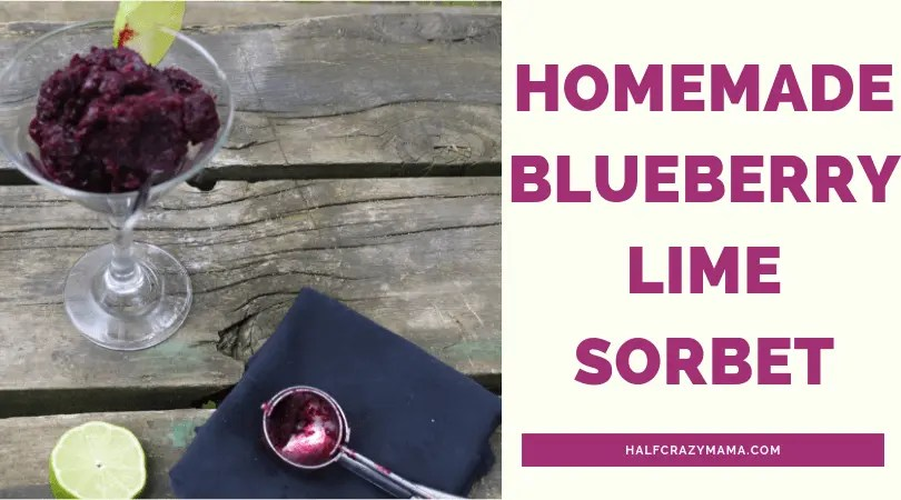 Homemade blueberry lime sorbet
