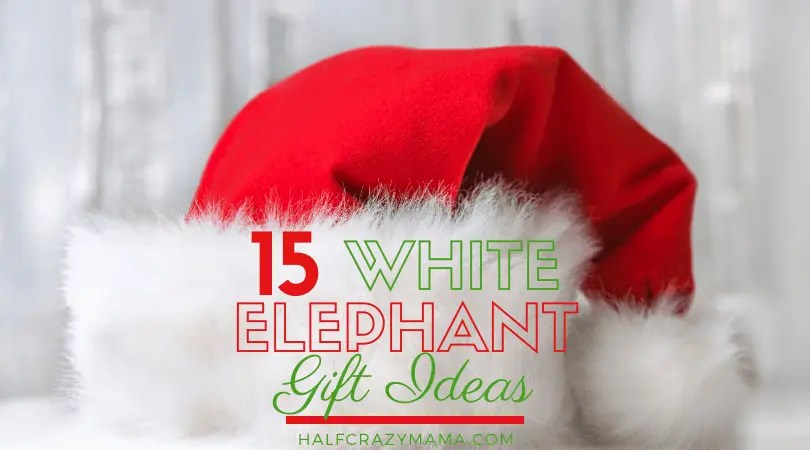 15 Funny And Awesome White Elephant Gift Ideas