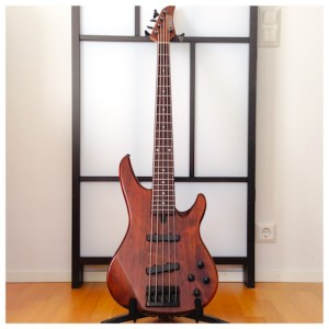 5 string bass electric