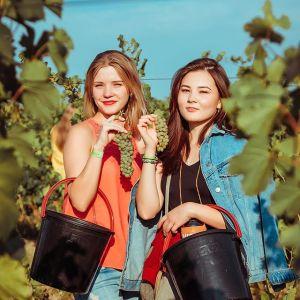 Vrouwen in wijngaard Kazahstan witte wijn kleine flessen