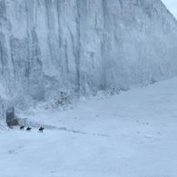 I will build a wall, the Wildlings will pay for it!