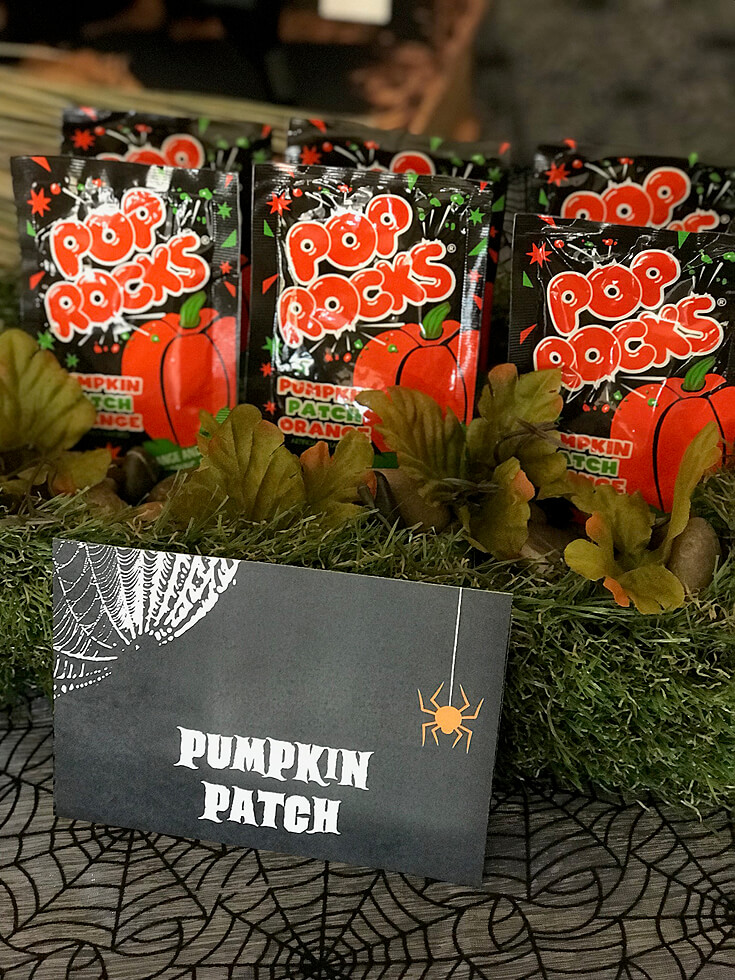"""A modern pumpkin patch is a popping good time! """"Black Cat Halloween Party Reveal"""" on Halfpint Design - Halloween party ideas, kitty cat party, kids party, cat party treats"""