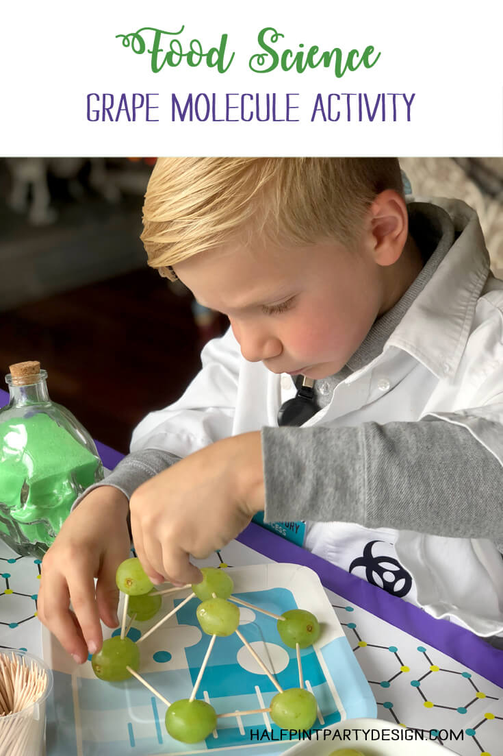 Boy working on grape molecules in food science activity