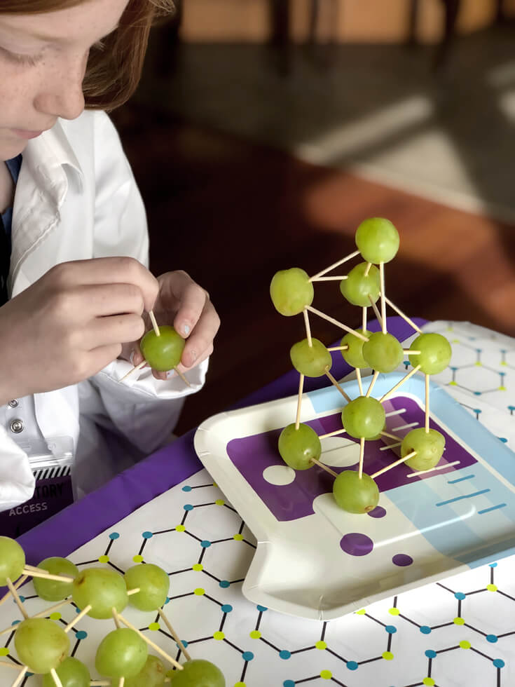 Edible structure made from grapes and toothpicks. Grape molecule food science activity.