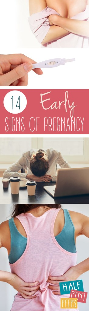 14 Early Signs of Pregnancy| Signs of Pregnancy, Early Signs of Pregnancy, Pregnancy Symptoms, Early Pregnancy Symptoms, Kid Stuff, New Mom, Parenting, Parenting Hacks, Popular Pin #Pregnancy #NewMom #Parenting #EarlyPregnancy