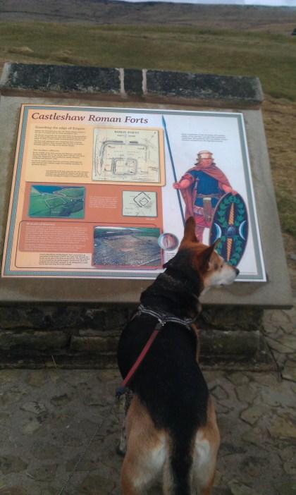 Castleshaw Fort information post