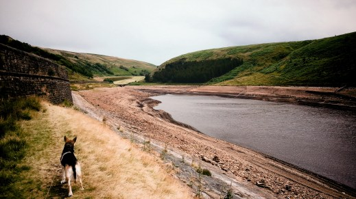 Butterley Reservoir - looking upthe Wessenden valley