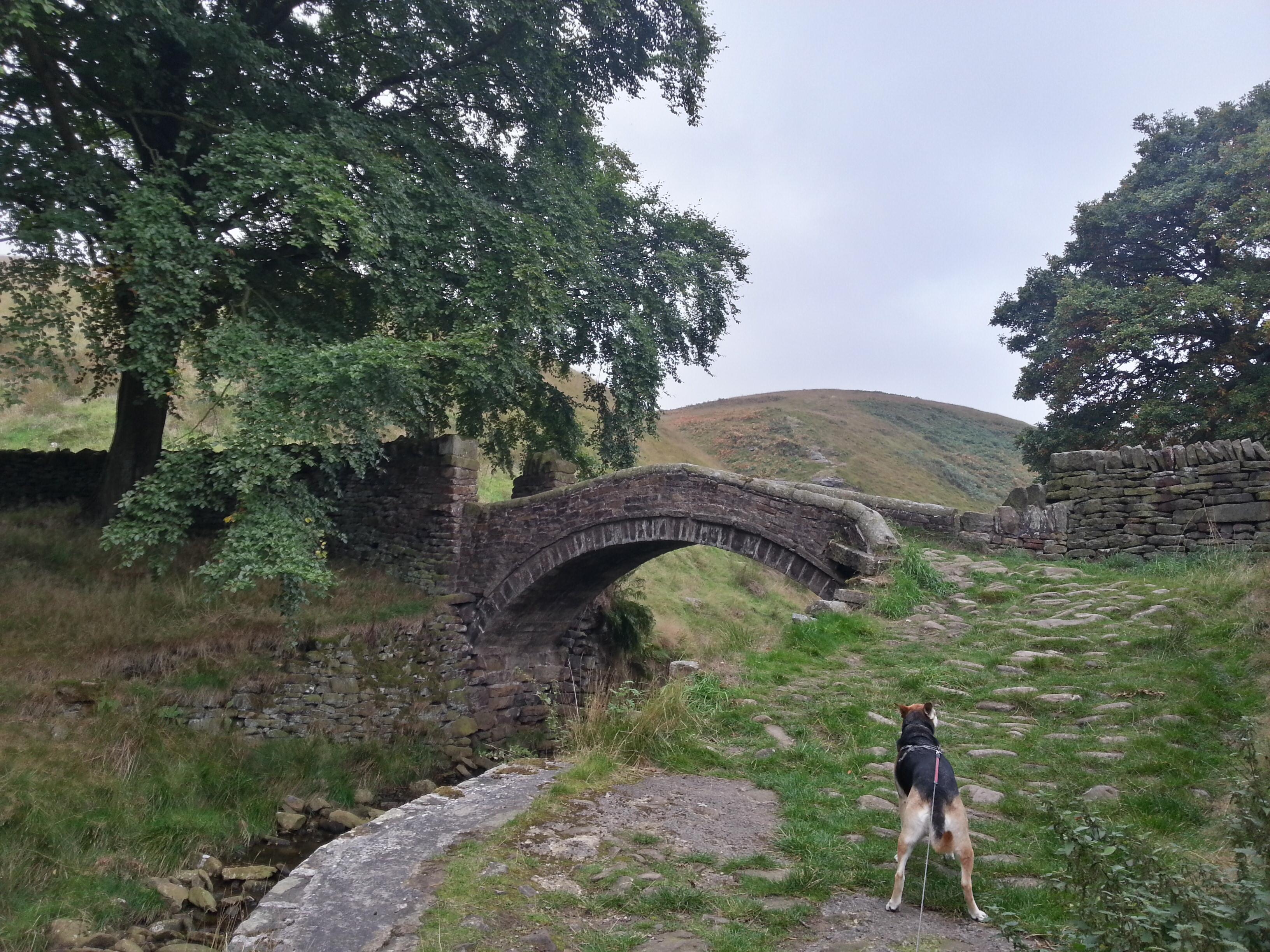 Eastergate Marsden Moors