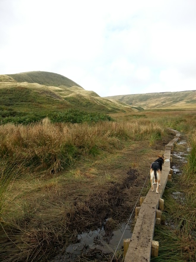 March Hill and Broadrake Clough crossing