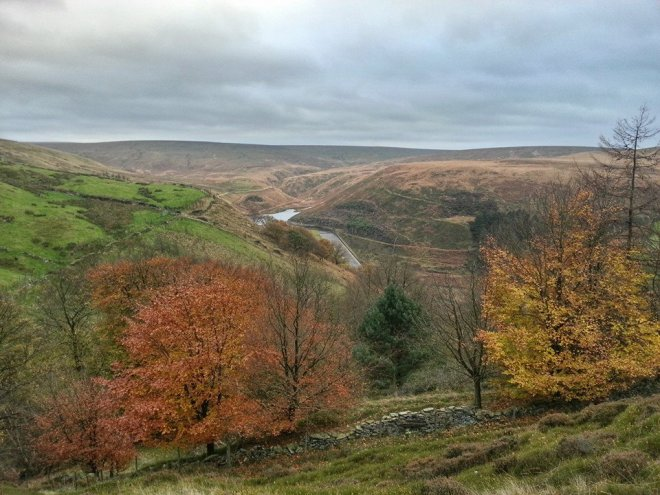 Looking up the Wessenden Valley across top end of Naze top Woods
