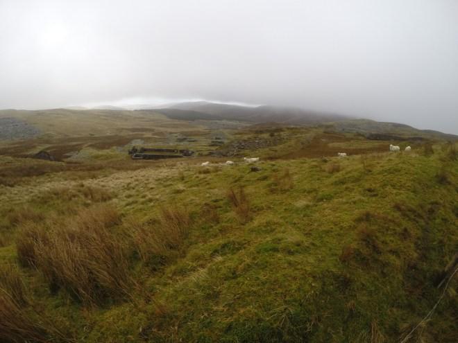 Sheep and Quarries Above Cwm Penmachno