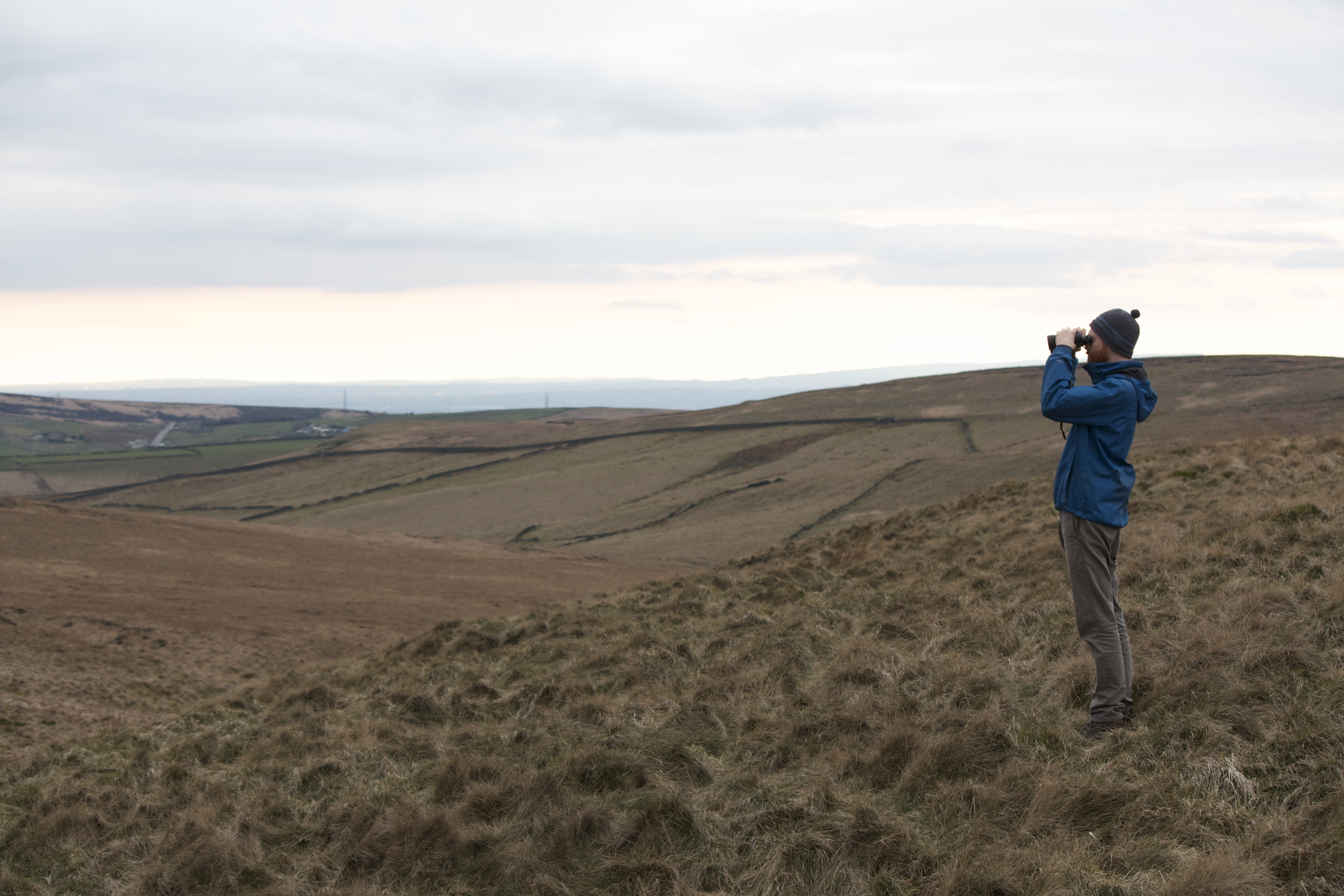 Watching out for Mountain Hare in Marsden