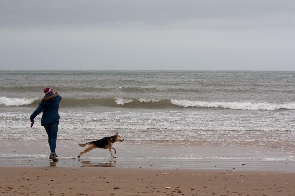 Filey south beach dog-friendly