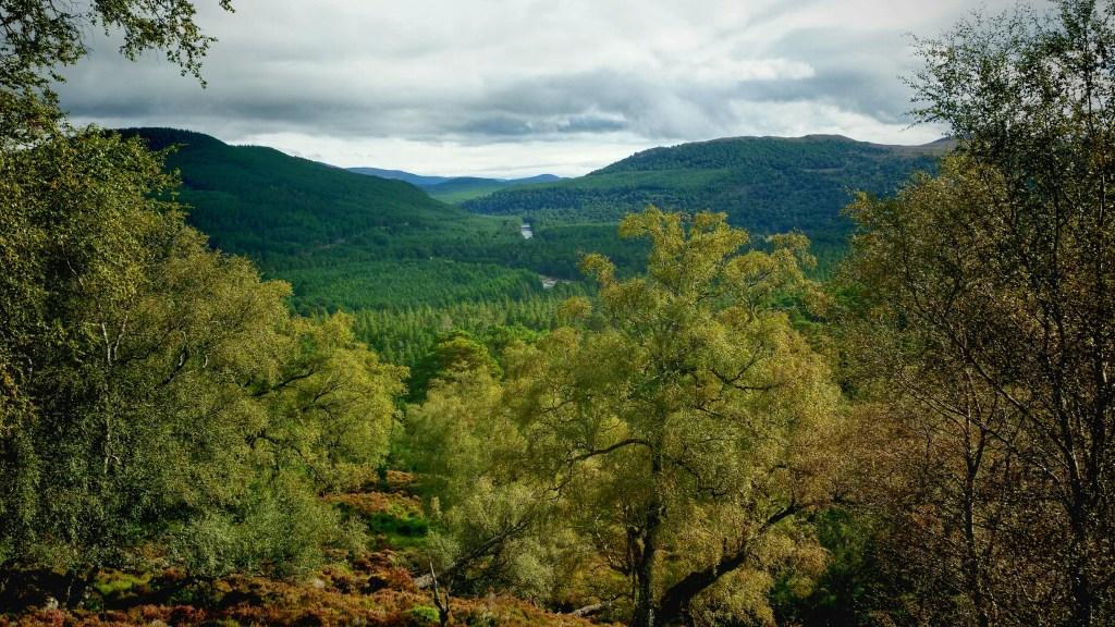 Blamoral Estate trek to Lochnagar