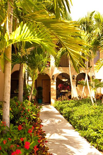 Halfway House West Palm Beach : halfway, house, beach, Pathways, Peace, Halfway, Houses