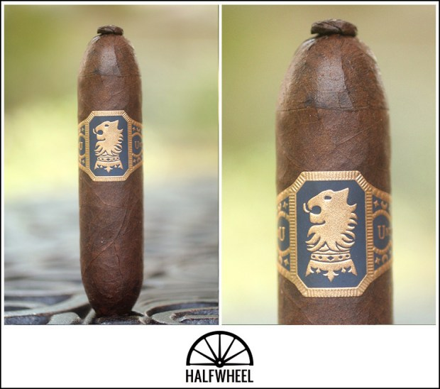 Undercrown Flying Pig 1
