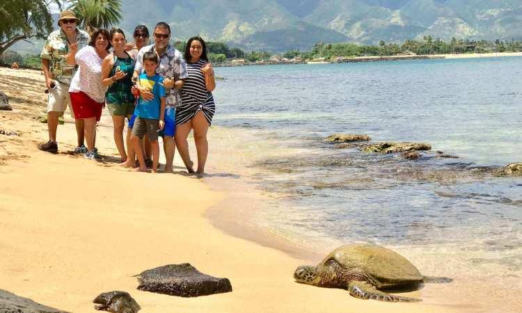 North Shore Turtle Tours