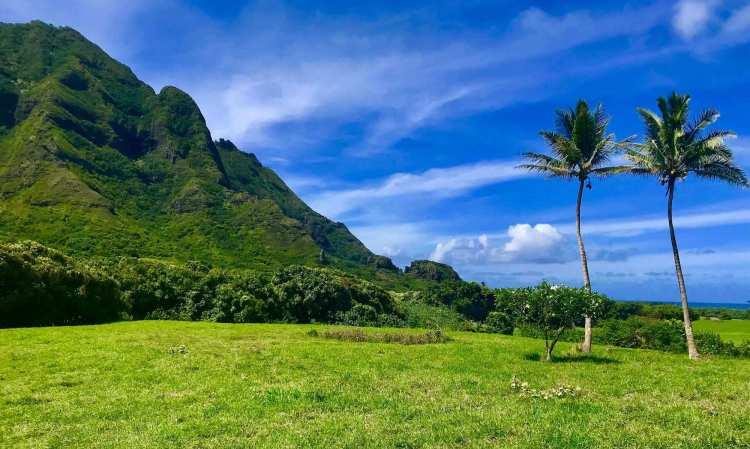 Oahu Hidden Gem Tours