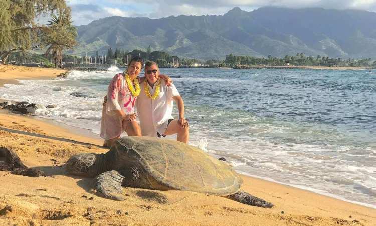 Oahu North Shore Turtle Tours