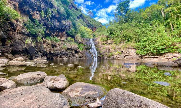North Shore waterfall swim