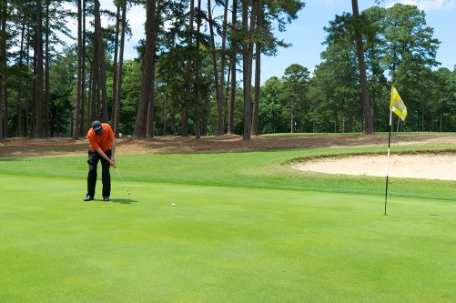 Golf Pro putting on green at golf course