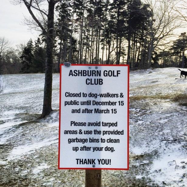 Ashburn Golf Club Dog-Friendly