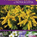 Identifying, Harvesting and Using Wild Plants of Eastern Canada