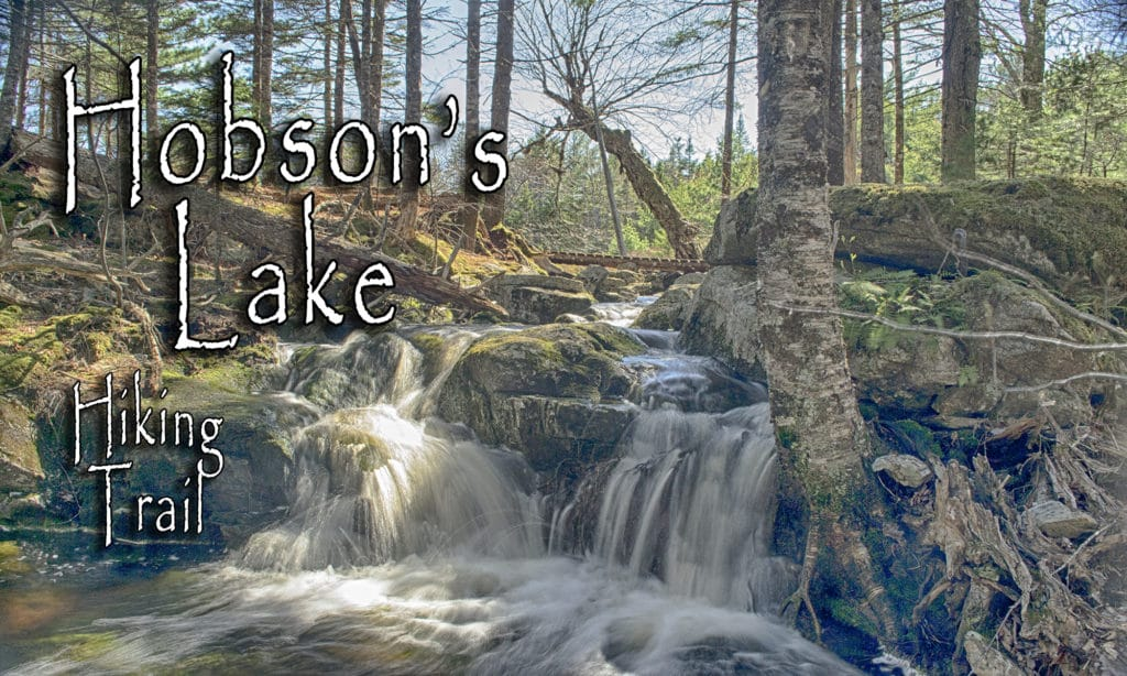 Hobson's Lake Hiking Trail