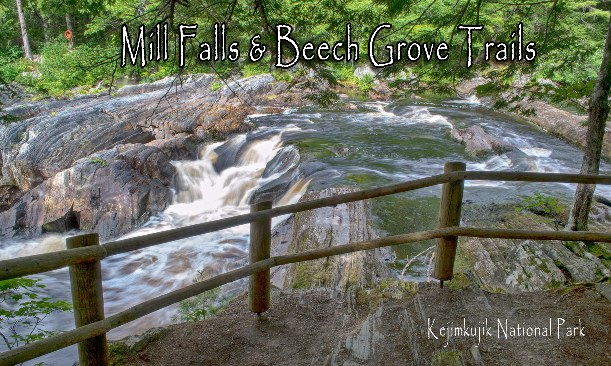 Mill Falls Trail