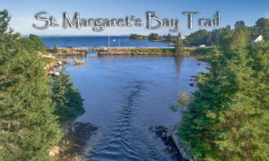 The Saint Margaret's Bay Trail